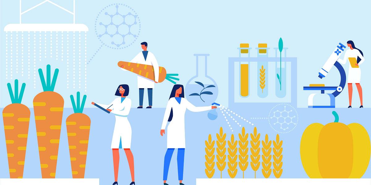 científicos de alimentos trabajando en un laboratorio