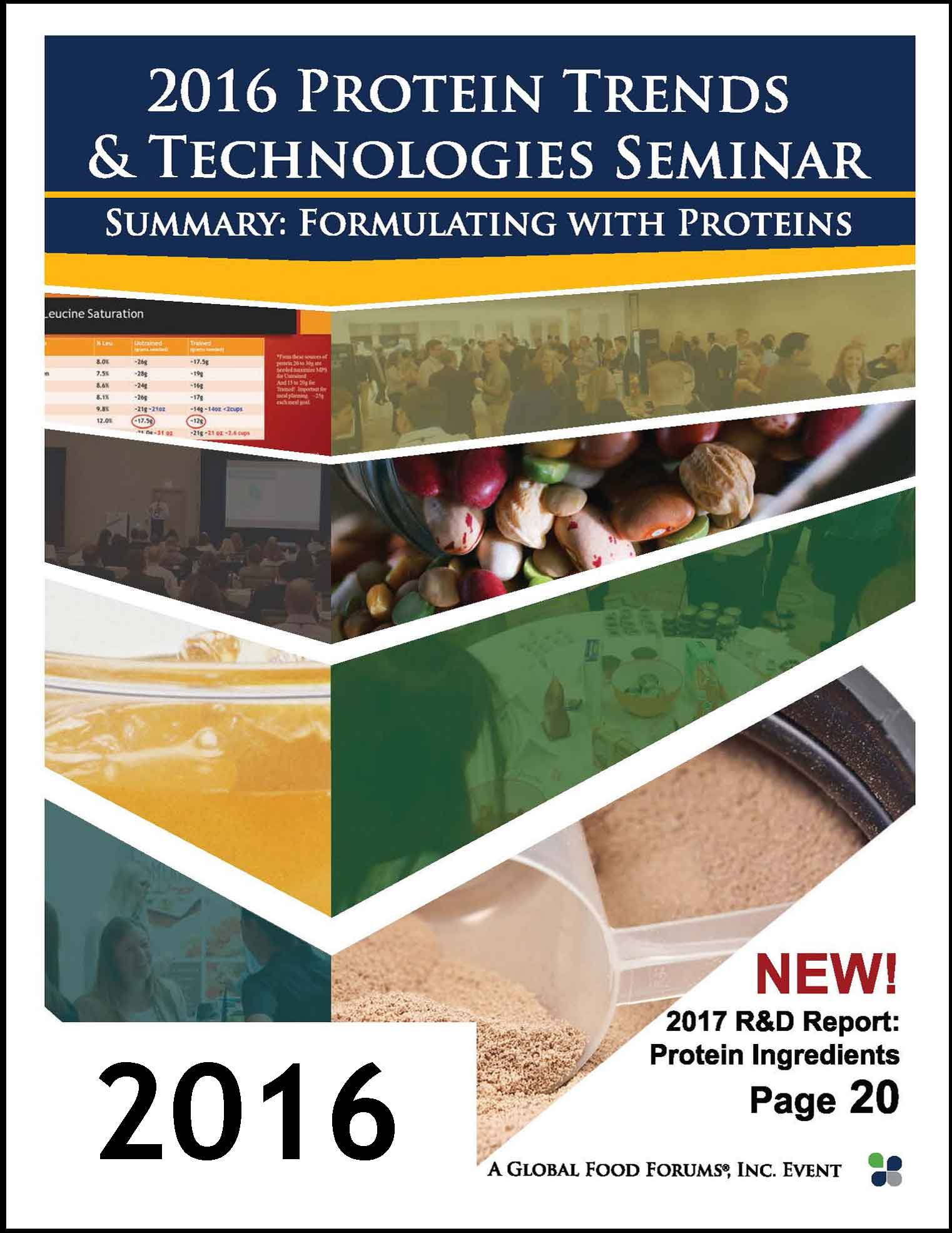 2016 Protein Trends Technologies Formulating Magazine_COVER